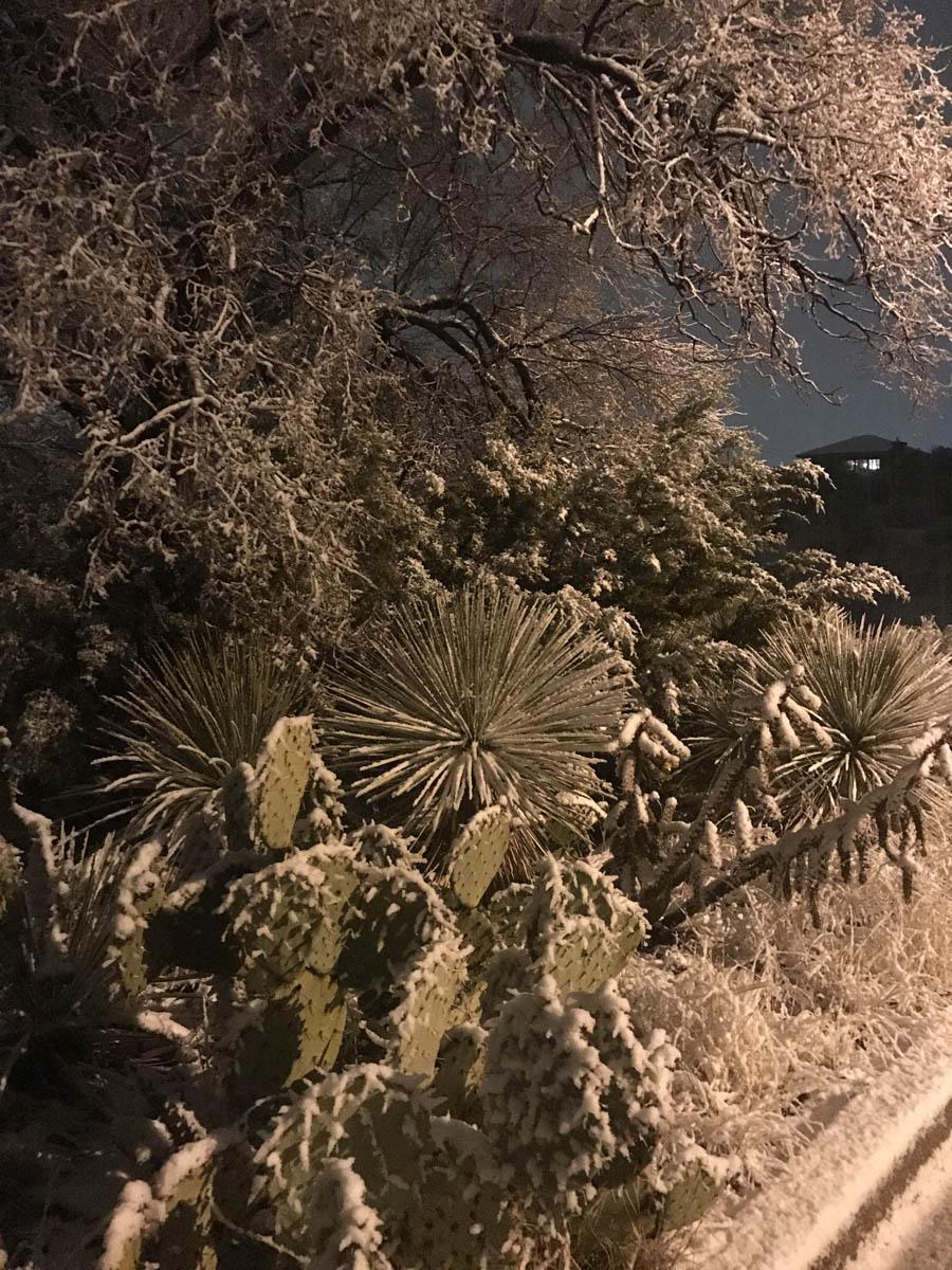 Snow Tgiving-Silver City 2b-SML